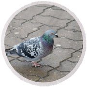 Colorful Dove Round Beach Towel