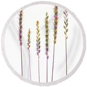 Colorful Grasses  Round Beach Towel