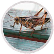 Colorful Grasshopper Round Beach Towel