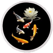Colorful Koi With Water Lily Round Beach Towel