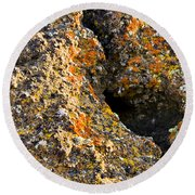 Colorful Lichens Round Beach Towel