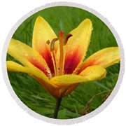Colorful Lily Dew Drops Round Beach Towel
