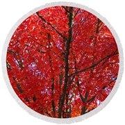 Colorful Red Orange Fall Tree Leaves Art Prints Autumn Round Beach Towel