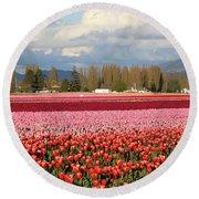 Colorful Skagit Valley Tulip Fields Panorama Round Beach Towel