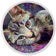 Colorful Tabby Kitten Round Beach Towel