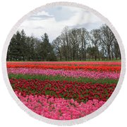 Colorful Tulips Blooming At Tulip Festival Round Beach Towel