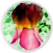 Colormax 3 Round Beach Towel