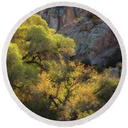 Colors Of Autumn In The Sonoran  Round Beach Towel