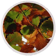 Colours Of Fall II Round Beach Towel