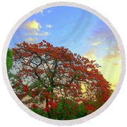 Colours Of Nature Round Beach Towel