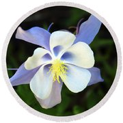 Columbine Colorado State Flower Round Beach Towel