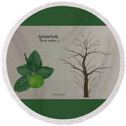 Common Apple Tree Id Round Beach Towel
