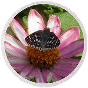 Common Checker Butterfly Round Beach Towel