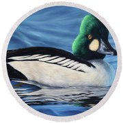 Common Goldeneye Round Beach Towel