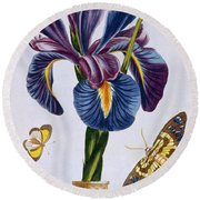 Common Iris With Butterflies Round Beach Towel