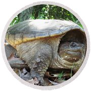 Common Snapping Turtle Round Beach Towel