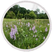 Common Spotted Orchids Round Beach Towel
