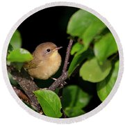 Common Yellowthroat Warbler Round Beach Towel