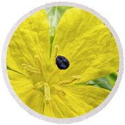 Complementary Colors Round Beach Towel