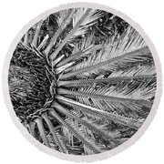Compository Round Beach Towel