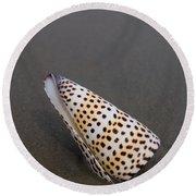 Cone Seashell On The Beach Round Beach Towel