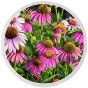 Coneflower Garden Round Beach Towel