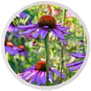 Coneflower Pedals Round Beach Towel
