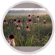 Coneflowers At Dawn Round Beach Towel