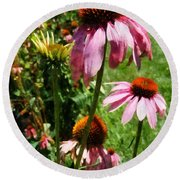 Coneflowers In Garden Round Beach Towel