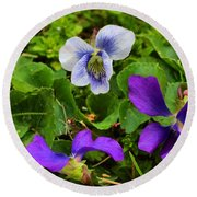 Confederate And Purple-blue Violets Round Beach Towel