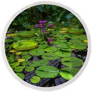 Conservatory Waterlilies Round Beach Towel