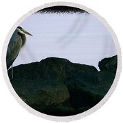 Contemplating Heron Round Beach Towel
