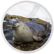 Contentment Round Beach Towel