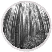 Cook Pines Round Beach Towel