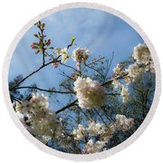 Cool Cherry Blossoms Round Beach Towel