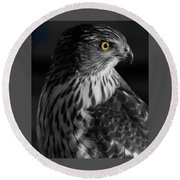 Coopers Hawk Bw Round Beach Towel
