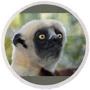 Coquerel's Sifaka Lemur Round Beach Towel