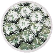 Coral Close Up  Round Beach Towel by Lanjee Chee