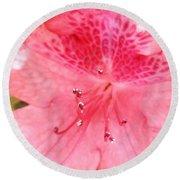 Coral Pink Azalea Goodness Round Beach Towel