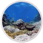 Corals Garden Round Beach Towel