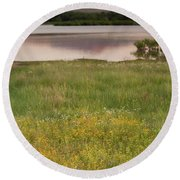 Corepsis Blooming At The Quanah Parker Lake Round Beach Towel