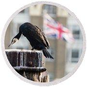 Cormorant Adult Phalacrocorax Carbo Round Beach Towel