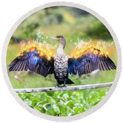 Cormorant Dries Its Wings Round Beach Towel