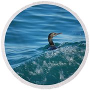 Cormorant In The Water Round Beach Towel