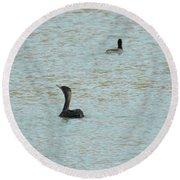 Cormorants On The Lake Round Beach Towel