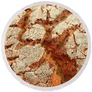 Corn Bread Crust Round Beach Towel