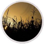 Corn Field Sunrise Round Beach Towel