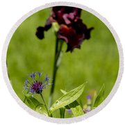 Corn Flower With A Friend Visiting Round Beach Towel