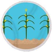 Corn Rows Round Beach Towel