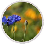 Cornflowers -2- Round Beach Towel